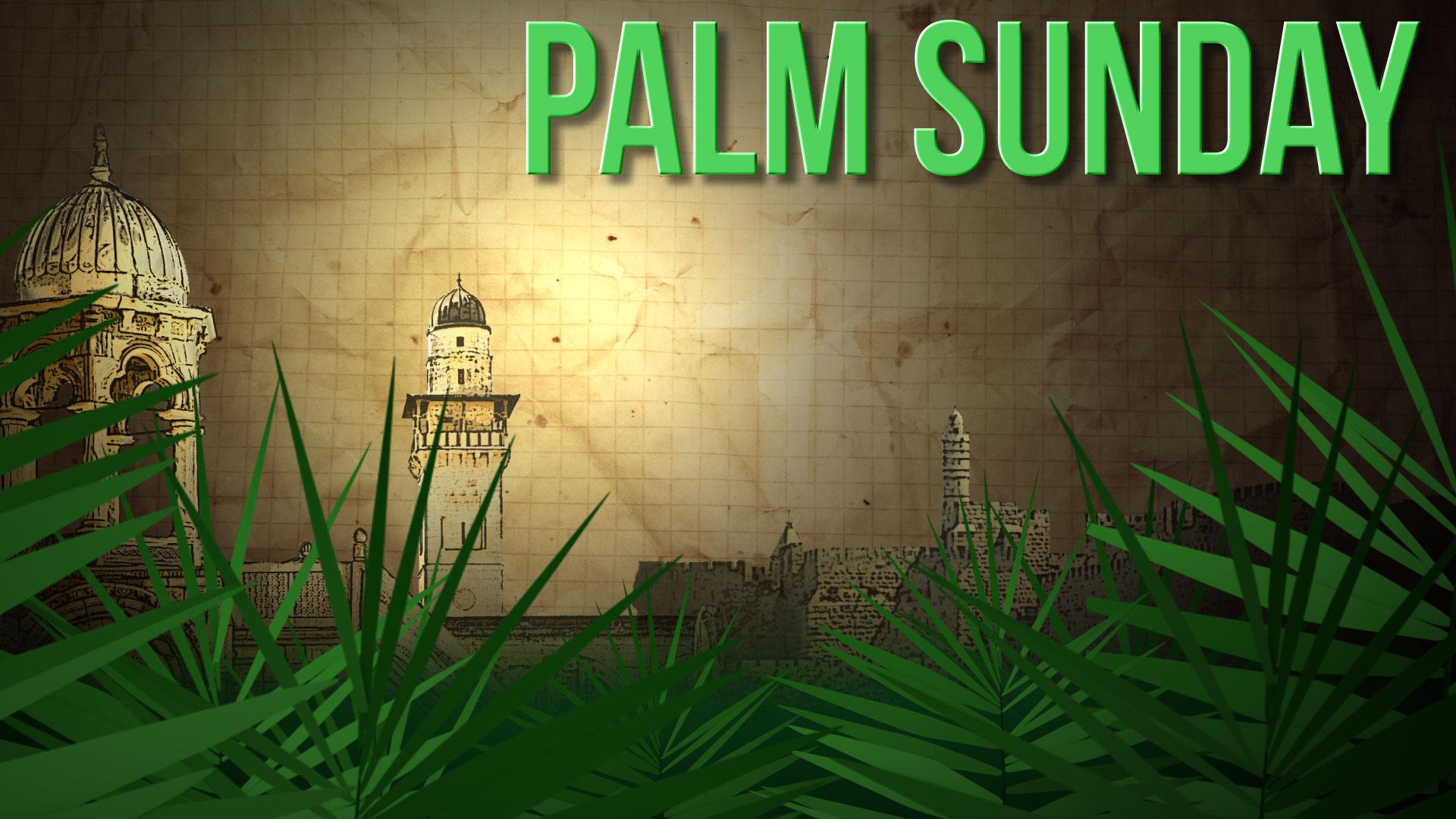 Palm-Sunday-2017-images