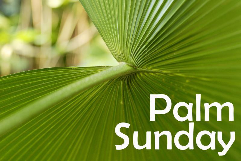 Palm-Sunday-Wishes-Photo