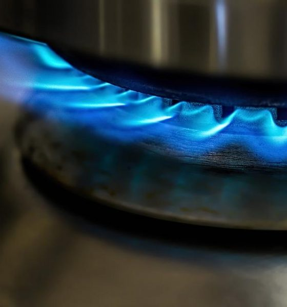 Flame, Gas Stove, Cooking, Blue, Heat, Hot, Energy